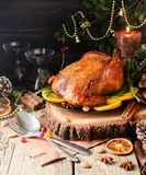 Peru cozido para o espaço do jantar de Natal ou do ano novo para o texto fotos de stock