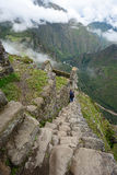 Peru inca ancient ruin Royalty Free Stock Photography