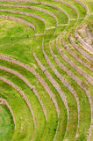 Peru, Inca Terraces of Moray. Moray, ancient Inca circular terraces. Probable there is the Incas laboratory of agriculture, Sacred Valley, Peru royalty free stock photos