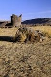 Peru incan ruin Zdjęcia Royalty Free