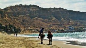 Peru Mancora 02 Royaltyfri Fotografi