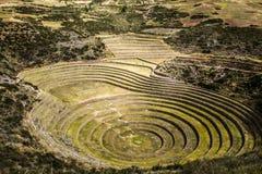 Peru, Moray, alte Inkarundschreibenterrassen. Probable dort ist das Inkalabor der Landwirtschaft Stockbild