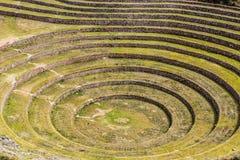 Peru, Moray, alte Inkarundschreibenterrassen. Probable dort ist das Inkalabor der Landwirtschaft Stockfoto