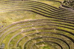 Peru, Moray, ancient Inca circular terraces. Probable there is the Incas laboratory of agriculture Stock Photos