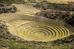 Peru, Moray, ancient Inca circular terraces. Probable there is the Incas laboratory of agriculture.  Stock Photography