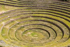 Peru, Moray, ancient Inca circular terraces. Probable there is the Incas laboratory of agriculture Stock Photo