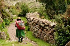 Peru, Old incan road in the canyon Cotahuasi Royalty Free Stock Image