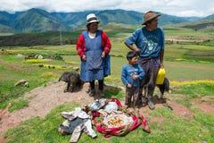 Peru People, famiglia peruviana, viaggio Fotografia Stock Libera da Diritti