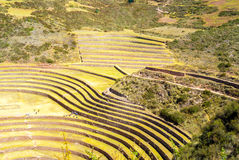 Peru, Pisac - Inca ruins in the sacred valley Stock Photography