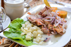 Ceviche - Peru, South America Royalty Free Stock Photos