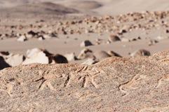 Peru, Toro Muerto Petroglyphs Stock Images