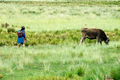 Peru Travel, gente peruviana, agricoltore Fotografia Stock