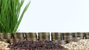 Peru zaznacza falowanie z stertą pieniądze monety i stosami banatka zdjęcie wideo
