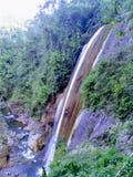 Peruana Catarata de Selva, Chanchamayo Peruanischer Dschungelwasserfall, Chanchamayo lizenzfreies stockbild