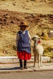 Peruanframsidor över det peruanska landet royaltyfri foto