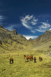 Peruanische Anden Lizenzfreies Stockbild