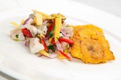 Peruanische/asiatische Fusion Ceviche Stockbild