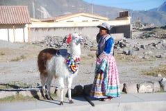 Peruanische Frau der Armut mit Lama stockfoto