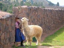 Peruanische Frau passt auf die fotografiert zu werden auf Touristen, Lizenzfreie Stockfotografie