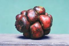 Peruanische Kartoffel Lizenzfreie Stockfotos
