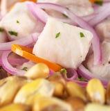 Peruanisches Ceviche lizenzfreies stockfoto