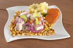 Peruanisches Ceviche stockfotografie