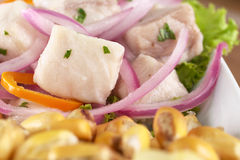Peruano-Estilo Ceviche Foto de Stock Royalty Free