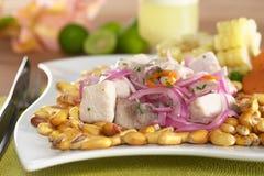 Peruano-Estilo Ceviche Imagens de Stock Royalty Free