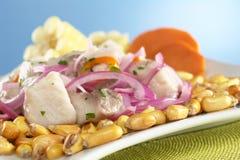 Peruano-Estilo Ceviche Imagem de Stock