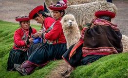 Peruanska kvinnor med Alpaca nära Cusco, Peru Arkivfoto