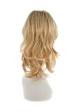Peruca do cabelo sobre a cabeça do manequim Foto de Stock Royalty Free