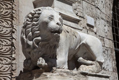 Perugia. Italy. Lion sculpture on the facade of the building. Royalty Free Stock Photography