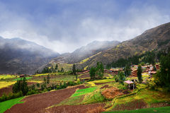 Peruvian agriculture on high mountains Royalty Free Stock Image