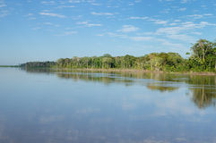Peruvian Amazonas, Amazon river landscape. Peru, Peruvian Amazonas landscape. The photo present reflections of Amazon river Stock Image