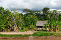 Peruvian Amazonas, Indian settlement. Peru, Peruvian Amazonas landscape. The photo present typical indian tribes house in the Amazon stock photography