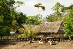 Peruvian Amazonas, Indian settlement. Peru, Peruvian Amazonas landscape. The photo present typical indian tribes settlement in the Amazon royalty free stock image