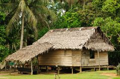 Peruvian Amazonas, Indian settlement. Peru, Peruvian Amazonas landscape. The photo present typical indian tribes settlement in the Amazon stock images