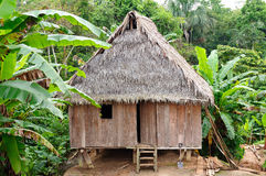 Peruvian Amazonas, Indian settlement. Peru, Peruvian Amazonas landscape. The photo present typical indian tribes settlement in the Amazon stock photo