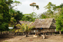 Peruvian Amazonas, Indian settlement Royalty Free Stock Photography