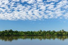 Peruvian Amazonas, Maranon river landscape. Peru, Peruvian Amazonas landscape. The photo present reflections of Amazon river Royalty Free Stock Images