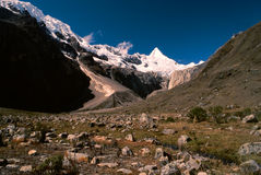 Peruvian Andes Stock Photo