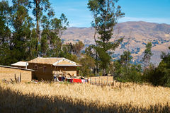 Peruvian Andes Royalty Free Stock Image