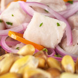 Peruvian Ceviche Royalty Free Stock Photo