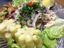 Peruvian ceviche food Stock Images