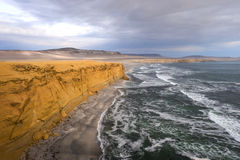 Peruvian Coastline, Paracas National Reserve Royalty Free Stock Images