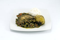 Peruvian Dish called Seco de Pollo made of chicken, rice, potatoes , cilantro. stock photos