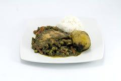 Peruvian Dish called Seco de Pollo made of chicken, rice, potatoes , cilantro. Stock Photos