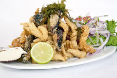 PERUVIAN FOOD: fried FISH MEAL CHICHARRON Stock Photography