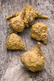 Peruvian ginseng or maca (Lepidium meyenii) Royalty Free Stock Photos