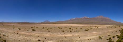 Peruvian highland, lake and vicuñas Royalty Free Stock Photography